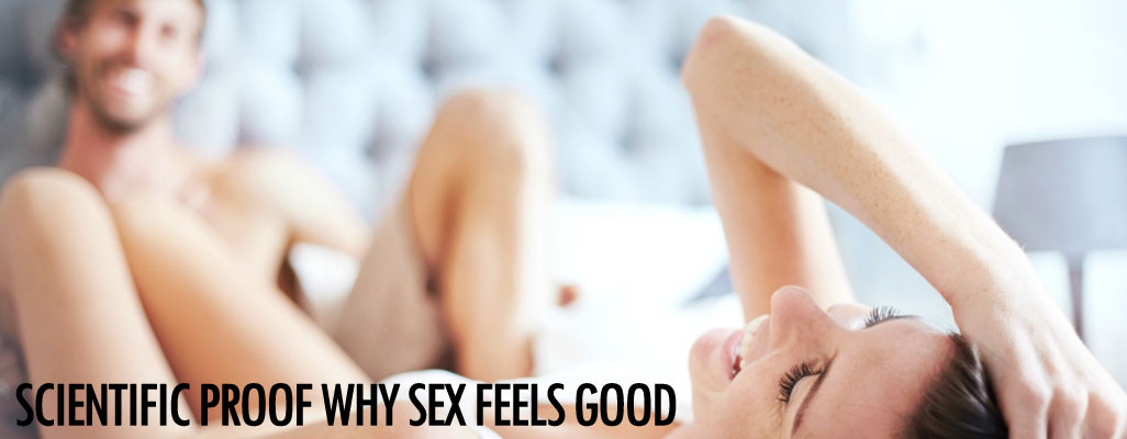 Scientific proof why sex feels good